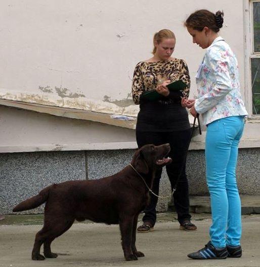 http://farvistgold.narod.ru/11/raynriver/ozersk3.jpg